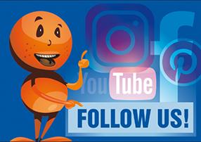 Folge uns auf Facebook, Insta & Co.